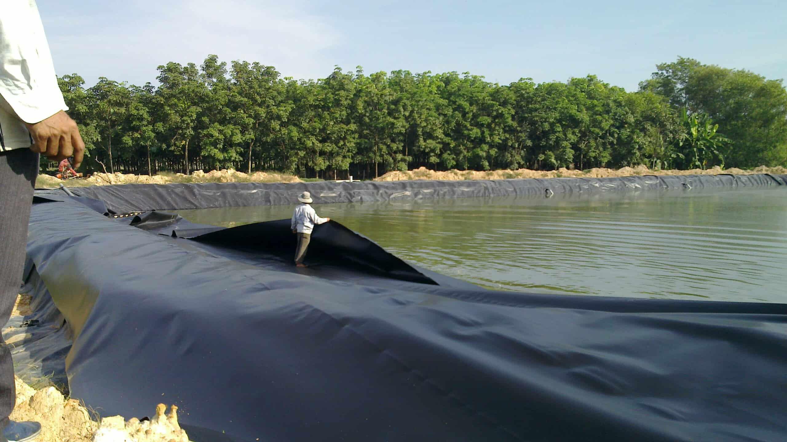 màng chống thấm HDPE - Đại Phú Vinh